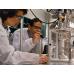 Ученые доказали, что тмин помогает от коронавируса